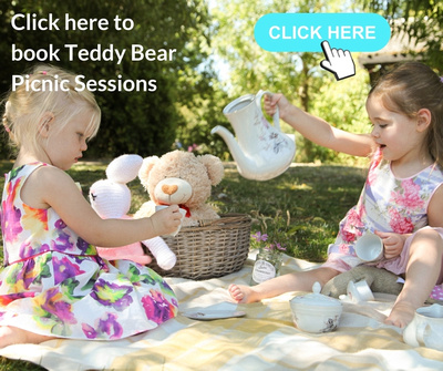 Teddy Bears Picnic Photo Sessions