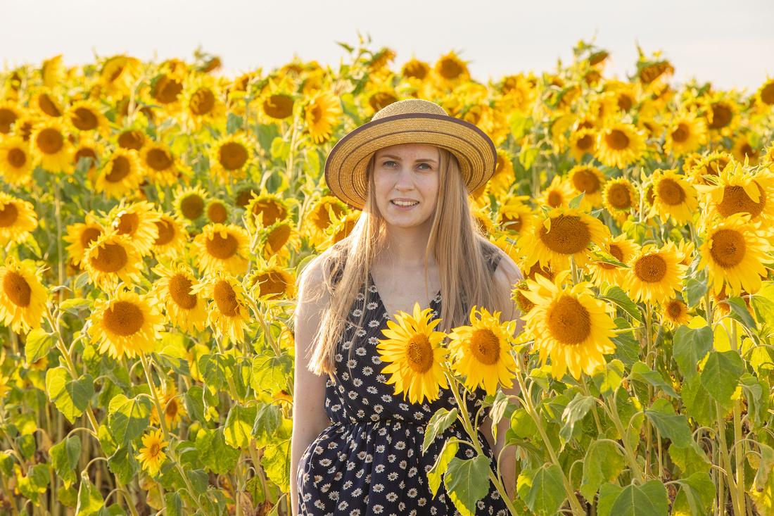 Sunflower Photo Shoot Essex