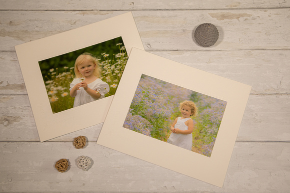 Family Portrait Photography Essex